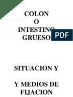 INTESTINO GRUESO - COLON - JATD.ppt