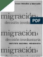 Irene Mercado Migración.-ilovepdf-compressed
