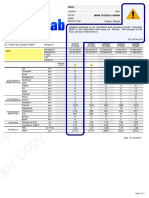 نمونه Sample Report Bio-Gas-Caution.pdf
