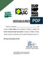 Certificado de Participação ENCONTRO NACIONAL.pdf