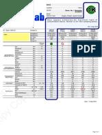 عصاSample-Report-Generator-Pass.pdf
