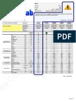 عصاييSample-Report-Diesel-Engine-caution.pdf