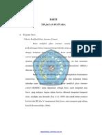 BAB II TINJAUAN TEORI PDF.pdf