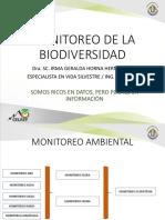 Monitoreo de Flora Silvestre