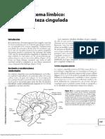 Capitulo 12. Sistema Limbico - corteza cingulada.pdf