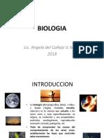 biologia-celula