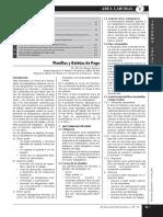 planilla de remuneraciones 1.pdf