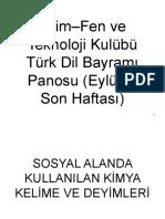 Bilim-Fen ve Teknoloji Kulübü Türk Dil Bayramı Panosu