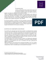 case-biomassa.pdf