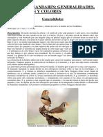 mandarincoloresmutaciones.pdf