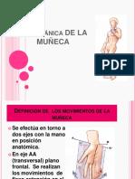 Biomecanica de La Muñeca
