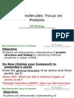 AP BIO 100110 Macro Molecules Proteins
