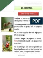 UD 5 LOS ECOSISTEMAS. UNOS PASTORES DIMINUTOS.pdf