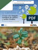 Plan de acción la biomasa forestal de Aragón