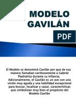 Modelo Gavilan.pdf