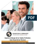 Experto-Masaje-Tejidos-Profundos-Guia-Tecnicas.pdf
