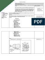 Planificacion Morfosintactica SUPERVISION
