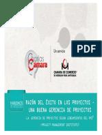 DOCUMENTO DE APOYO 1 - GERENCIA DE PROYECTOS.pdf