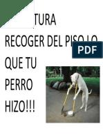 ES CULTURA RECOGER DEL PISO LO QUE TU PERRO HIZO.docx