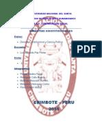 271876684-Informe-Garantias-Constitucionales-1.docx
