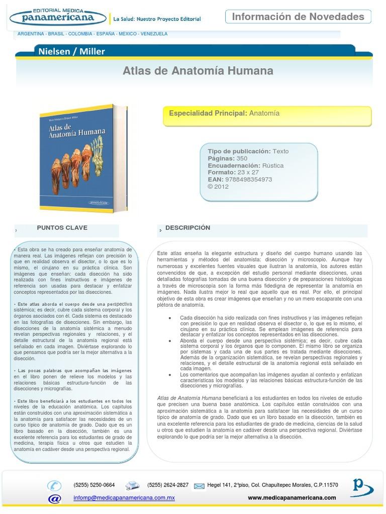 Nielsen Atlas De Anatomía Humana Esp 23072012 Anatomía Imagen