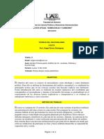 Programa Teor as Del Nacionalismo 2012 13