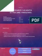 Presentacion Final Microbiologia 2702