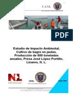 ESTUDIO-DE-IMPACTO-AMBIENTAL-CERRO-PRIETO.pdf