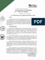 07_resolucion Ejecutiva Regional n 294-2017-Grj Gr