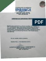 nr11.1.pdf
