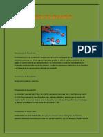 CastilloPech Pedro M11S4 Proyecto Reutilizando