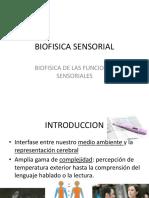 biofisica sensorial