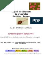 Origem e Diversidade de Procariotos e Archeas