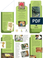 Colecta y Preparacion de Un Ejemplar Herborizado