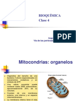 4.1.Ciclo de Krebs.importancia Fisiológica.vía de Las Pentosas.gluconeogénesis