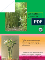 El Bambu Japones Copia 2