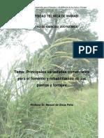 PRINCIPALES VARIEDADES COMERCIALES DE P.y F..docx