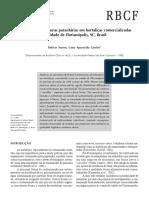 a15v42n3.pdf