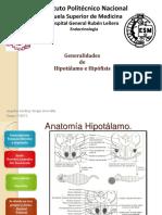 5.1 anatomia de hipotalamo