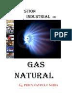 Gas Natural 2012