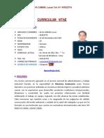CURRICULUM   VITAE (actual).pdf