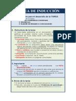 TAREA DE INDUCCIÓN 201820.docx