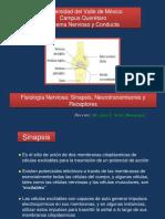 FISIOLOGÍA NERVIOSA