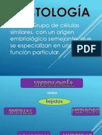 Diapositivas histiologia