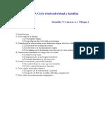 6 Ciclo vital individual y familiar Villegas.pdf