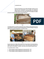 Recopilacion de Informacion Del Cacao