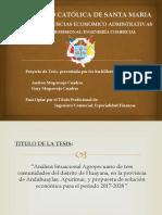 Análisis Situacional Agropecuario de tres comunidades del distrito de Huayana, en la provincia de Andahuaylas, Apurímac, y propuesta de solución económica para el periodo 2017-2028