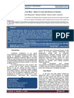 227368_EM minor_report with review literature.pdf