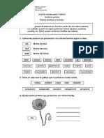 Guía de Vocabulario 5