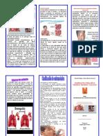 triptico enfermedades respiratorias.doc